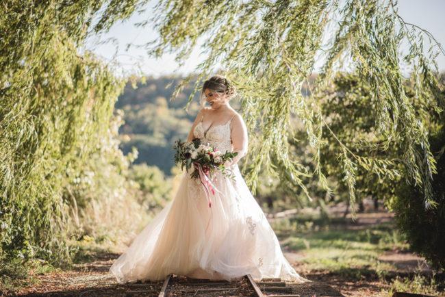 Stoney Creek Wedding Photography